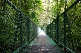 hanging_bridges_08