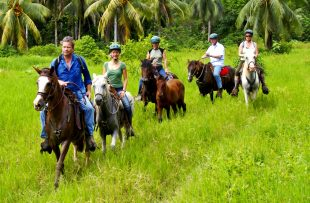 Sarapiqui horse riding