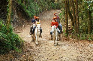 horseback_riding_05