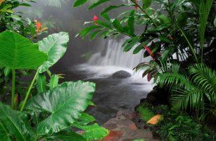 hot_springs_03